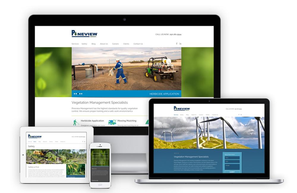 Pineview-Responsive-Web-Design-Solocube-02
