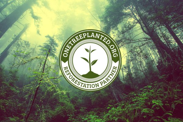 Solocube Creative Becomes Reforestation Partner With One Tree Planted